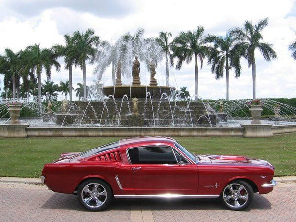 1966 Mustang Fastback. My all time DREAM CAR!!! but it would have to be purple (obviously, it wouldn't be an original paint color) ! ! ;-)