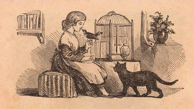 Victorian Graphic- Girl with Birdcage, Bird, Cat - The Graphics Fairy: