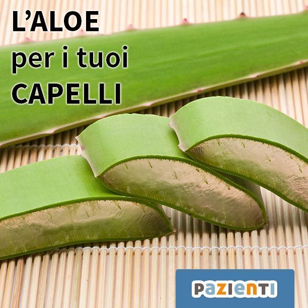 L'Aloe contiene enzimi che favoriscono la crescita dei capelli. Le sue proprietà, inoltre, mantengono il PH del cuoio capelluto a livelli ottimali. Sia il succo che il gel di Aloe funzionano: basta un cucchiaio di succo ogni giorno, magari a stomaco vuoto, per apportare forza e salute alle nostre chiome!  #pazienti #aloe #aloevera #rimedi #rimedinaturali #capelli #benefici #natura #salute #benessere #green #bellezza #daprovare #succo #gel #pic #green #anticaduta