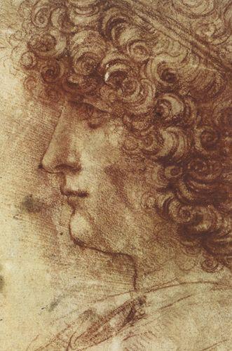 Studio profilo di un giovane - Leonardo - Opere d'Arte su Tela - Listino prodotti - Digitalpix - Canvas - Art - Artist - Painting