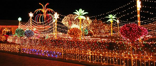 Jamaican Christmas Decorations Cayman Islands Tropical