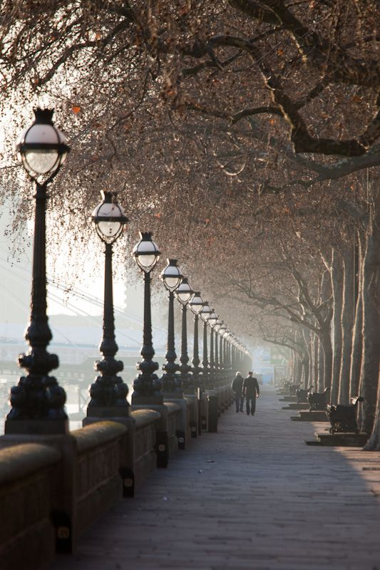 Beautiful! Riverside London, England... ( this line of trees and lamp post must have an end, while it is my focal point.....which one is yours? .......jf)