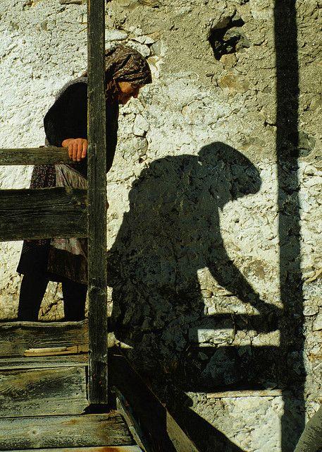 """L'ombra invecchia....    """"Marie"""" e la sua compagna ombra.   Foto scattata ad Avaris. Un piccolo borgo (tre case) in comune di Enemonzo - Carnia - Friuli.  Isolato da tutto e da tutti."""