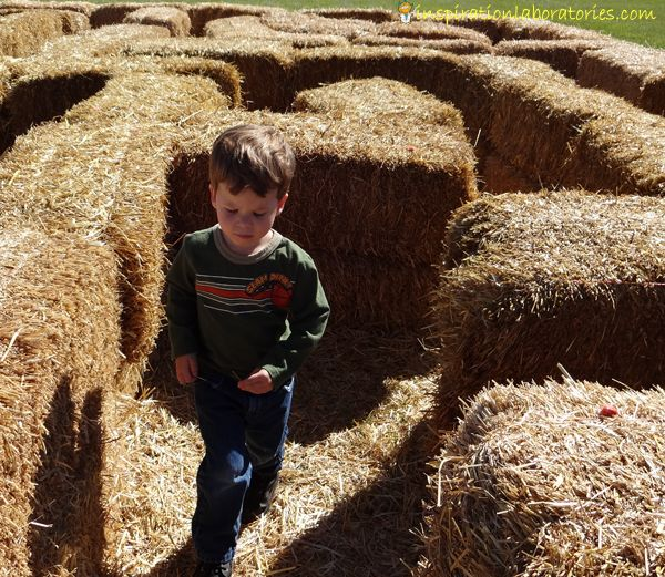 20 Maze Activities for Kids Straw Maze