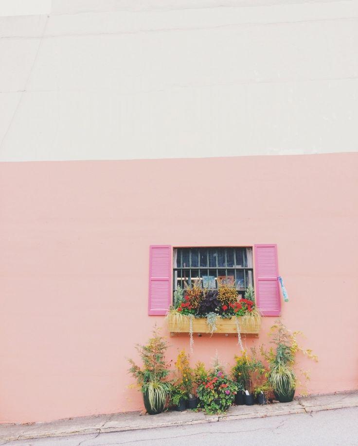 Pink shutters | VSCO | sandiegore