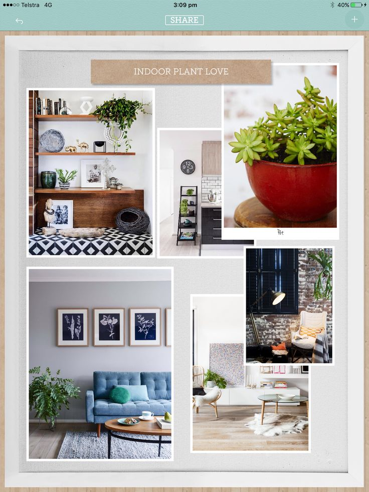 Monday Moodboard: indoor plant love