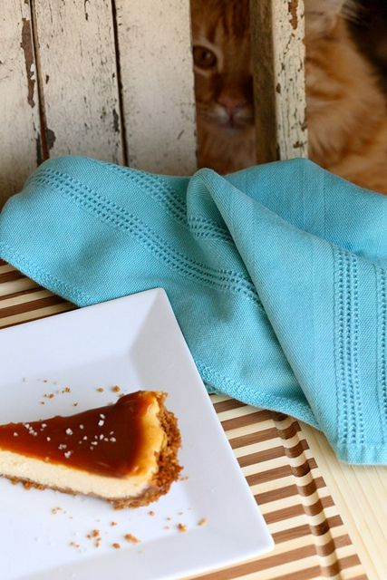 Salted Caramel Cheesecake Pie | Delicious | Pinterest