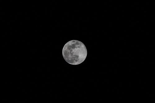 zanzibar, simply the moon