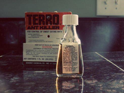 Vintage TERRO Ant Killer