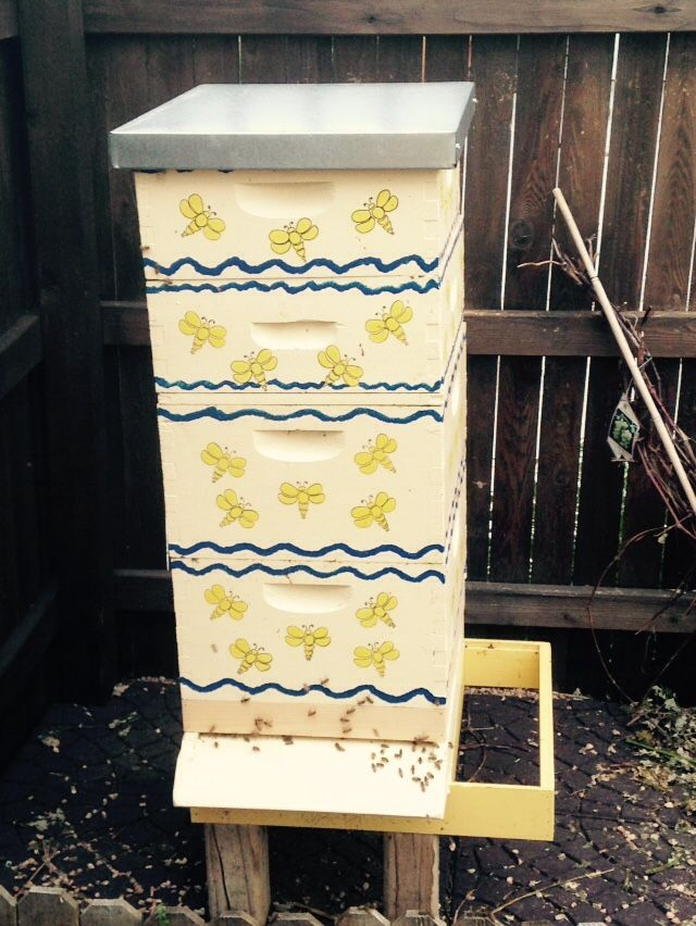 24 Best Images About My Decorated Bee Hives On Pinterest