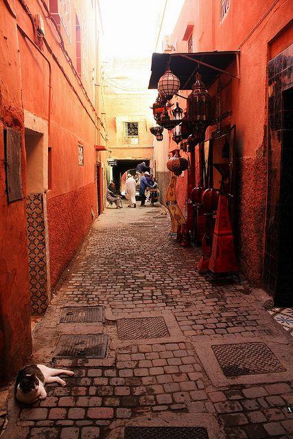 Marrakech morocco travel morocco tangier