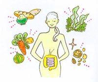 胃腸内視鏡の世界的権威 新谷弘実先生の腸内環境理論を公開