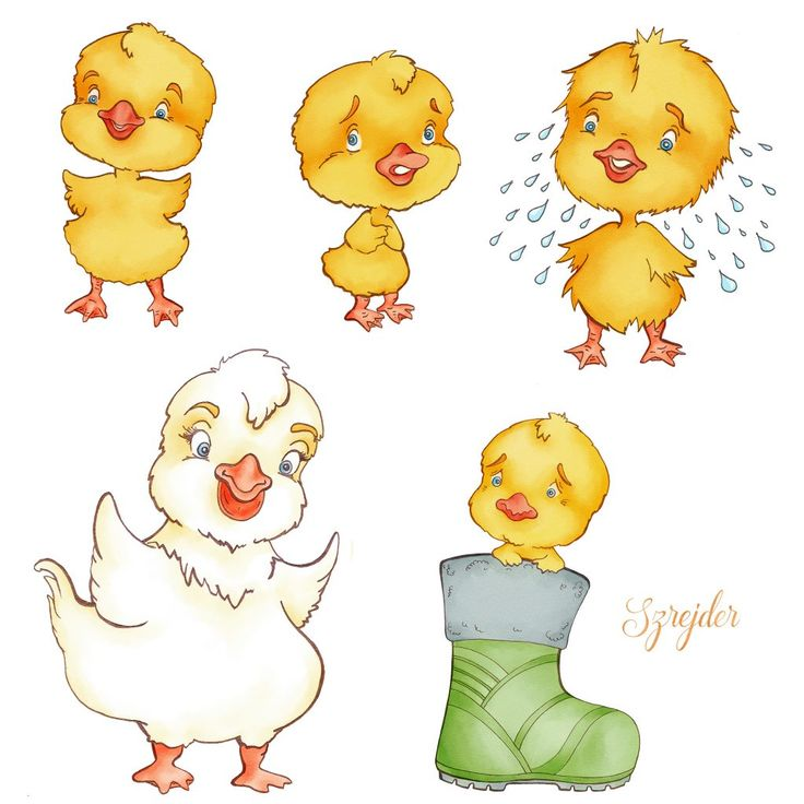 Drawing chickens