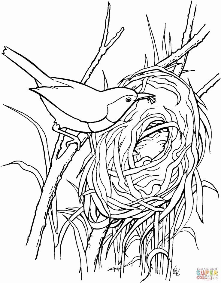 18++ Bird in a nest coloring page download HD