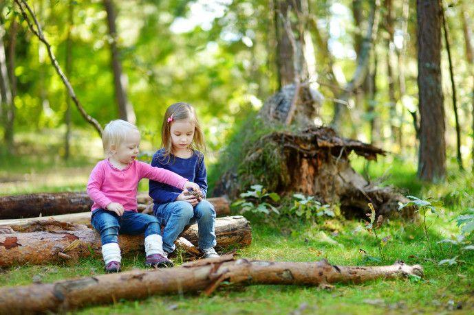 Waldspiele - Kinderspiele-Welt.de
