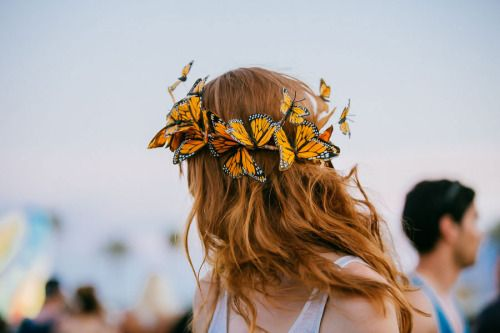 Butterfly hair
