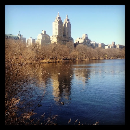 New York Central Park. Read more about New York great outdoors: http://www.imperatortravel.com/2012/09/discover-new-york-outdoors-top-5-sights-of-the-big-apple.html