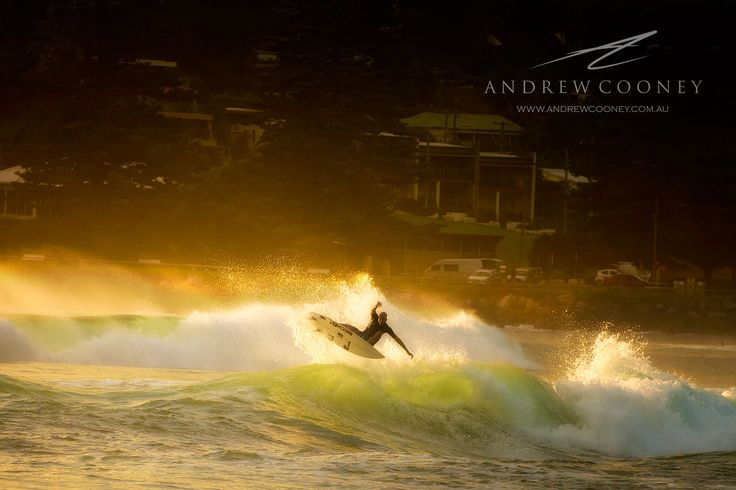 Surfing Golden Light -  Image - Andrew Cooney  www.andrewcooney.com.au
