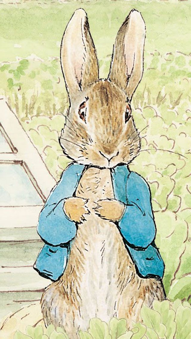 From Peter Rabbit