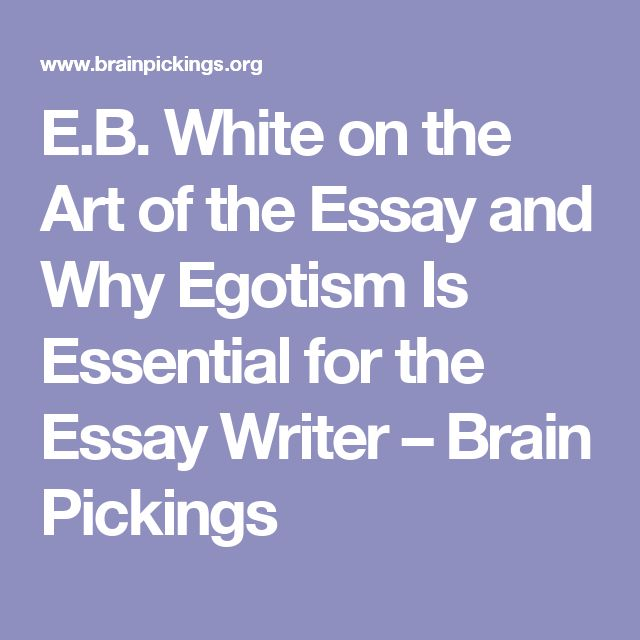 best essay writer ideas life essay  e b white on the art of the essay and why egotism is essential for the essay writer