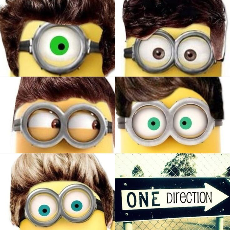 Minion one direction..... Nialls is so cute(: