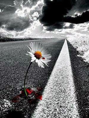 Χρυσαφένια ψήγματα: ΅...Και μαθαίνεις ότι, αλήθεια, μπορείς να αντέξεις... Και ότι, αλήθεια, έχεις δύναμη... Και ότι, αλήθεια, αξίζεις... Και μαθαίνεις… Μαθαίνεις... Κάθε αντίο μαθαίνεις...΅ Χόρχε Λούις Μπόρχες