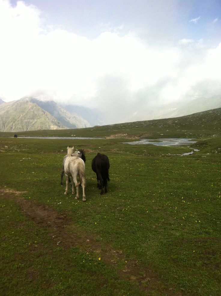 A picture taken near to Rohtang (Manali) these horses in these landscapes near to this lake and mountains made me remember the song of Brayn Adams used for Spirit soundtrack