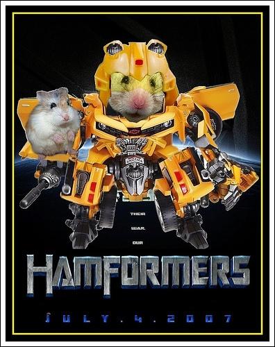 Hamformers - Hamsters in Disguise! Lol...
