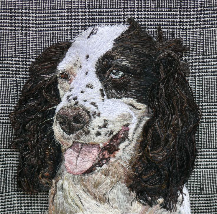 Buzz Freehand Machine Embroidery Portrait commission by Art Sea Craft Sea