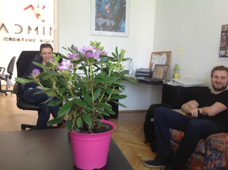 Rhododendron & Angelika, New Business Manager & Krzysztof, Managing Director