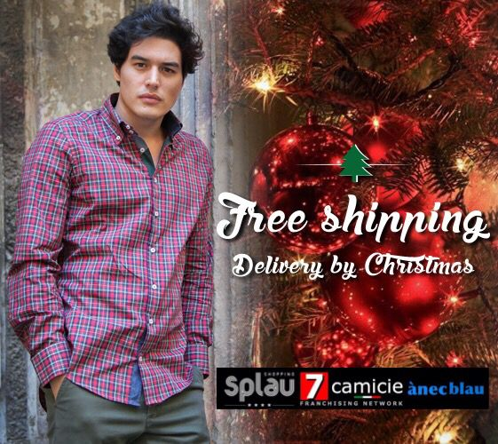 Free Shipping, delivery by Christmas.