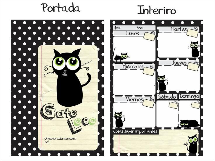 Organizador semanal gato loco