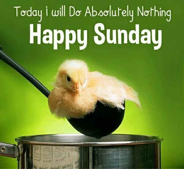 Happy Sunday Text Messages   Sunday SMS   Sunday Images   Sunday Quotes   Sunday Wallpapers   Happy Sunday Morning Wishes