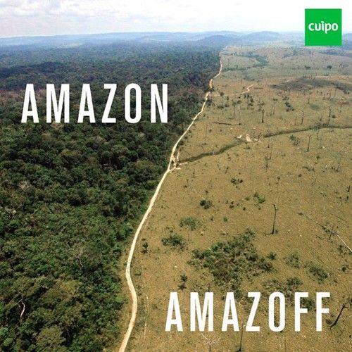 hier is een duidelijke breuk tussen twee verschillende naturen te zien. aan de ene kant een levend, groen, schitterend bos en aan de andere kant een droge vlakte.