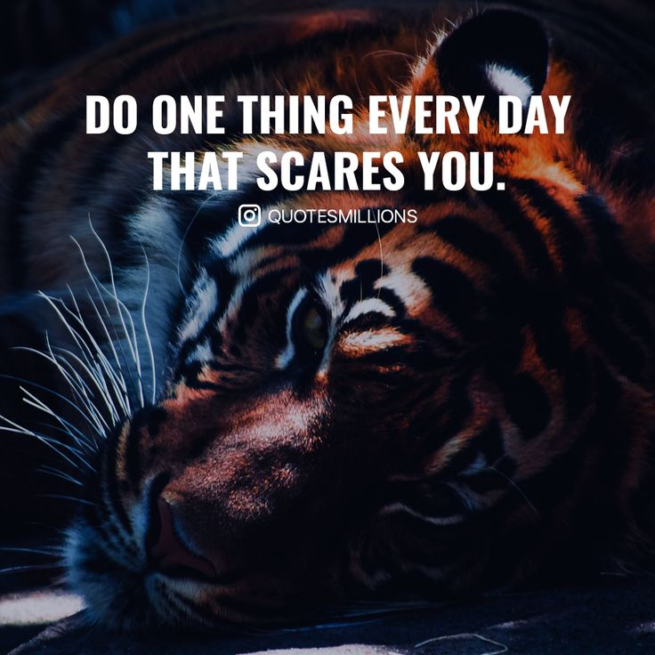 Do something today that scares you