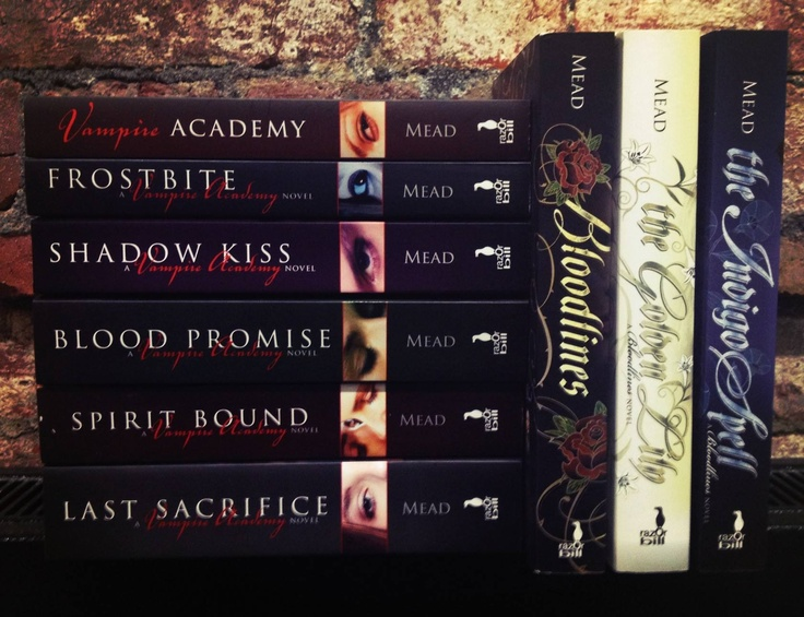 Vampire academy and Bloodlines series, the best series I have read so far Hoping the movie doesn't wreck it but hey don't judge a book by its movie. Recommend these series to anyone :)
