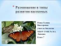 Размножение и типы развития насекомых - Уроки биологии