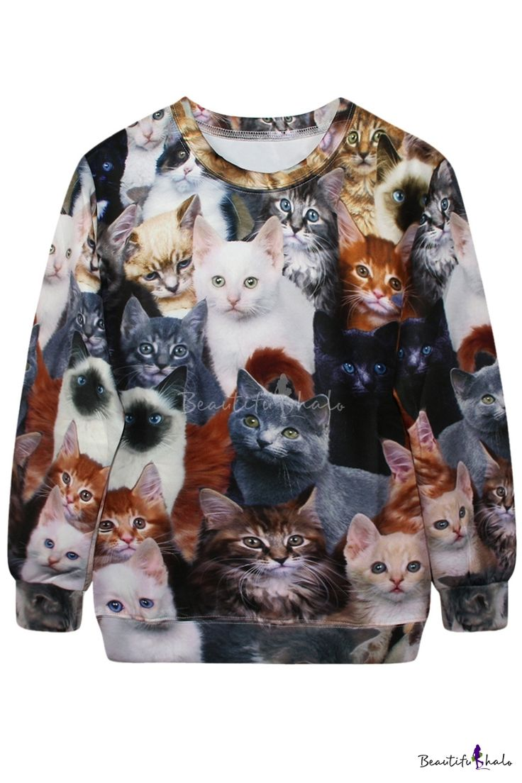 55 Best Too Good For This World Pure Images On Pinterest Badly Drawn Tshirt Short Circuit Mens Buy Online At Grindstore 1452 3d All Kinds Of Cats Print Sweatshirt