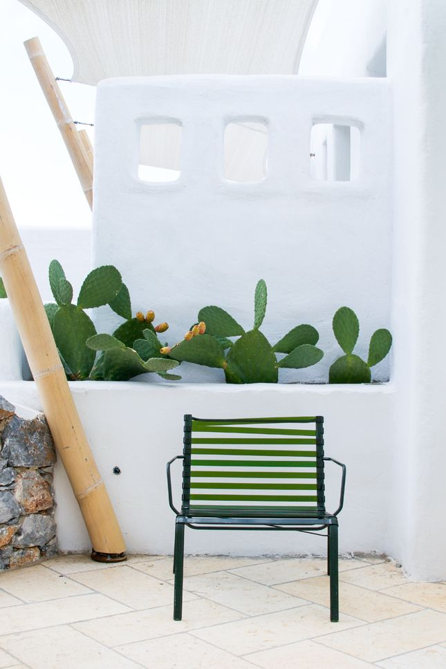 pinned by barefootblogin.com Pylaia boutique hotel & its cacti