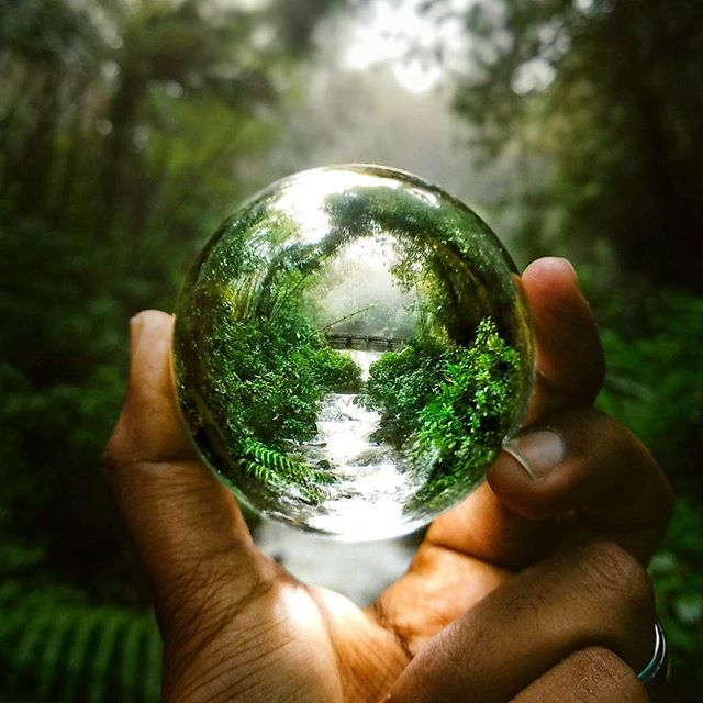 Hold the Jungle in your hand! Wherever you go, Lensball will be there to enhance your adventures in ultraclear wide-angle! Phenomenal capture by @clifordshelton