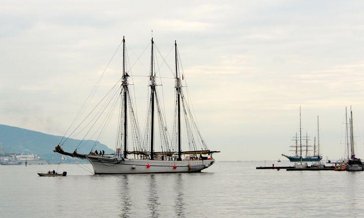 Tall ships in La Spezia Bay