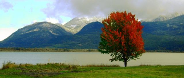 Indian Summer in the Kootenays, BC