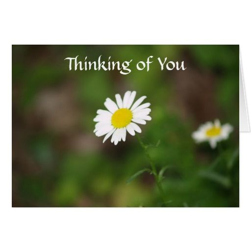 thinking of you today with flowers | Were Thinking Of You Images Images & Pictures - Becuo