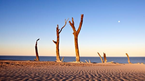 The must-sees of Queensland: Fraser Island