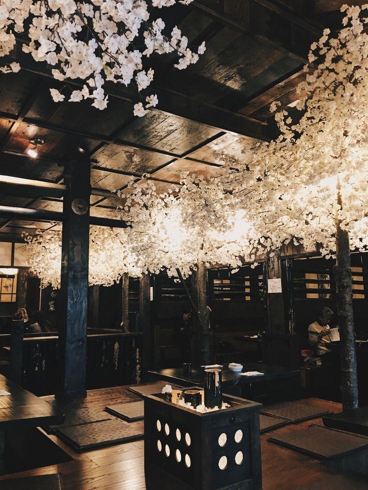 Japanese food is so good🍱
