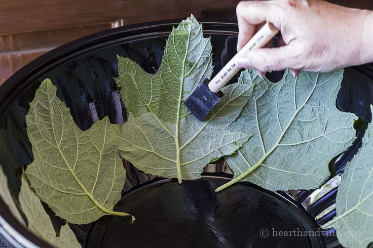 How to Make a Leaf Embossed Concrete Fountain – Dan330