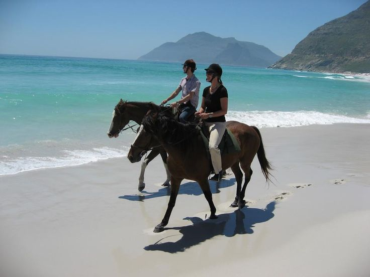 Dave Worswick - Noordhoek Beach Horse Riding