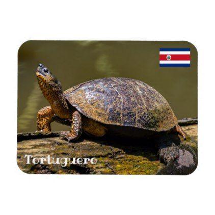 Costa Rica Tortuguero - River Turtle Magnet  $5.55  by DavidJallaud  - cyo customize personalize diy idea