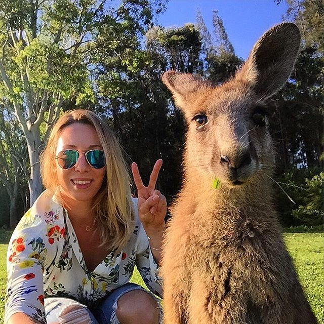 It's probably the best selfie with kangaroo I've ever done in Australia  The kangaroo was much more prepared than I was    #selfie #kangaroo #amazing #wildlife #naturelovers #animalslovers #bestoftheday #picoftheday #selfiewithkangaroo #travelgirl #traveler #travelling #animalphotography #puppy #cute #perfectmoment #travelaroundtheworld #podróże #nsw #aussie #smile #polishgirl #ontheroad #travelblog #australia #australiagram #travellife #travelphotography #przygoda #podróż