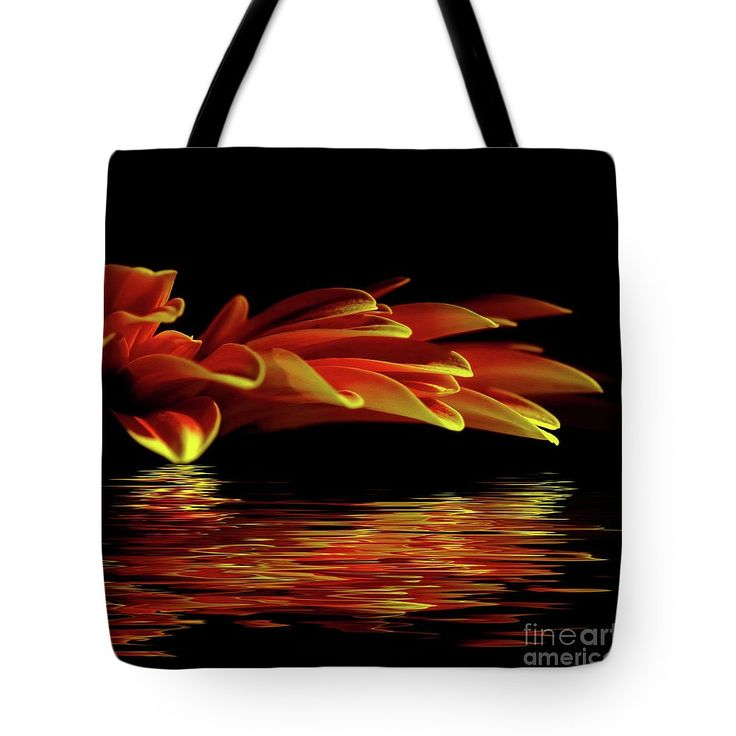 Midnight Glow Tote Bag by Kaye Menner Photography